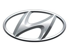 Hyundai Chrome Headlight Trim